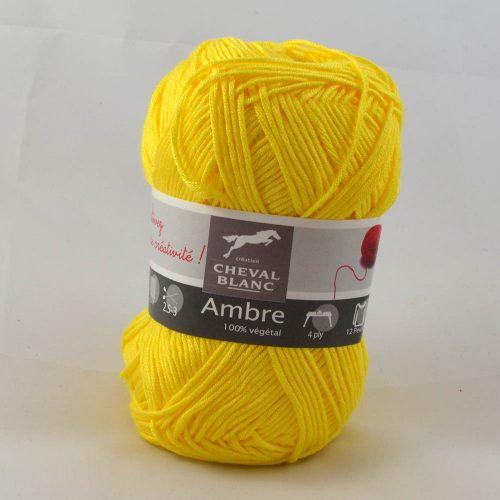 Ambre-51 narcis